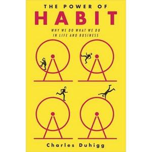 [로켓직구][해외도서] The Power of Habit : Why We Do What We Do in Life and Business, Random House