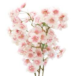 행복한마을 벚꽃 날리며 조화 부쉬